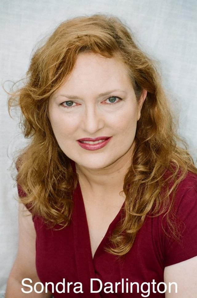 Sondra Darlington Profile The Jana Vandyke Agency